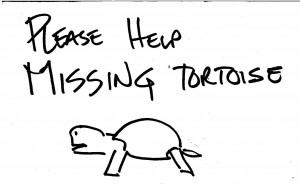 Missing Tortoise sign